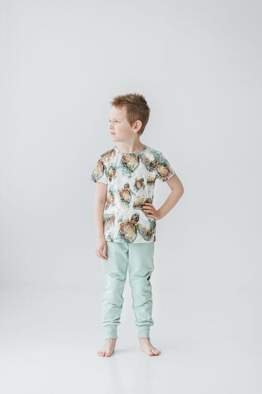 Lasten t-paita kilpikonna kuosilla